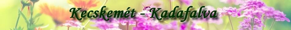 Kecskemet-Kadafalva