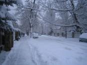 ho_utca
